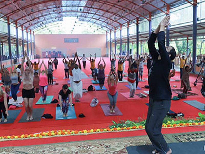 Certified Yoga Instructors